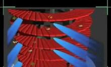 Bộ lọc đĩa tự động helix system 3cr disc 130 micron, đầu tưới nhỏ giọt