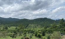 Đất đường Xuân Diệu, Lộc Châu 2 mặt tiền đường