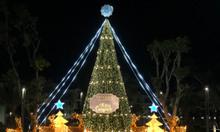 Cho thuê cây thông Noel loại lớn 8m - 10m - 12m - 30m