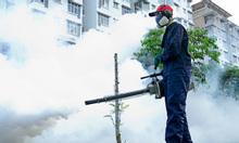Công ty diệt côn trùng tại nhà Đông Nam Á