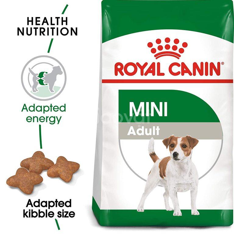 Hạt cho chó Royal Canin Mini Adult