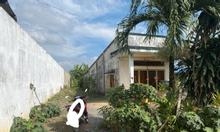 Bán đất vườn bưởi tặng nhà cấp 4
