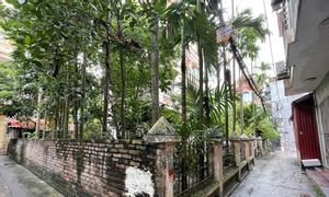 Bán đất chính chủ tại Phố Thanh Lân, Quận Hoàng Mai
