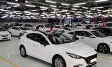 Công ty cần thuê các dòng xe từ 4-7c