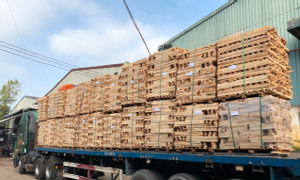 Cần mua ván ghép gỗ cao su chất lượng