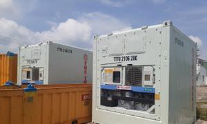 Container lạnh 10 Ft giải pháp lưu trữ hàng hoá tiết kiệm hiệu quả