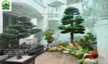 Thiết kế sân vườn đẹp ở Bình Dương
