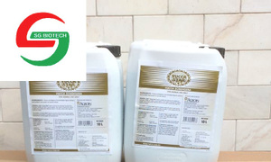 Mua bán yucca nước, yucca bột, yucca mexico, yucca nguyên liệu