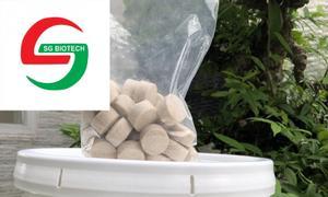 Biopro tablet vi sinh giảm tảo, ổn định nước dạng viên nén
