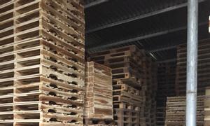 Chuyên cung cấp các loại pallet gỗ